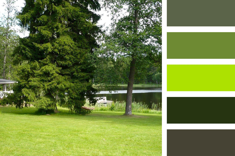farbkombination gruen